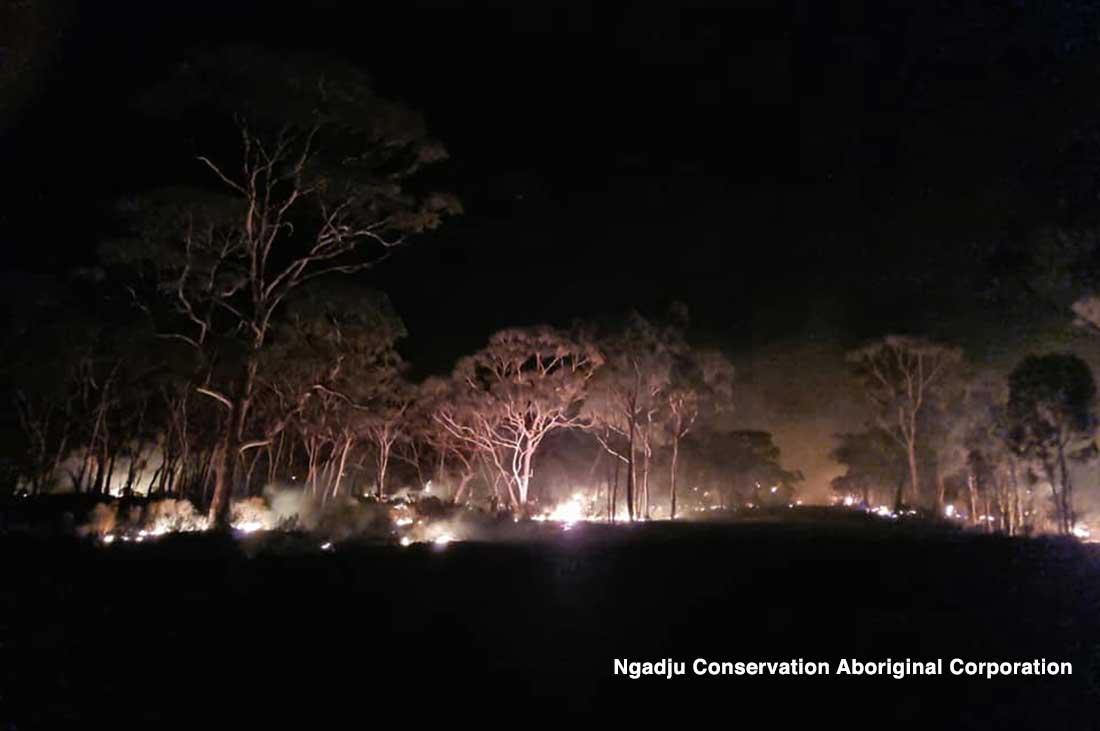 Ngadju-Conservation-Aboriginal--Corporation